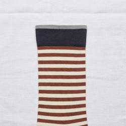 Sepia Stripe