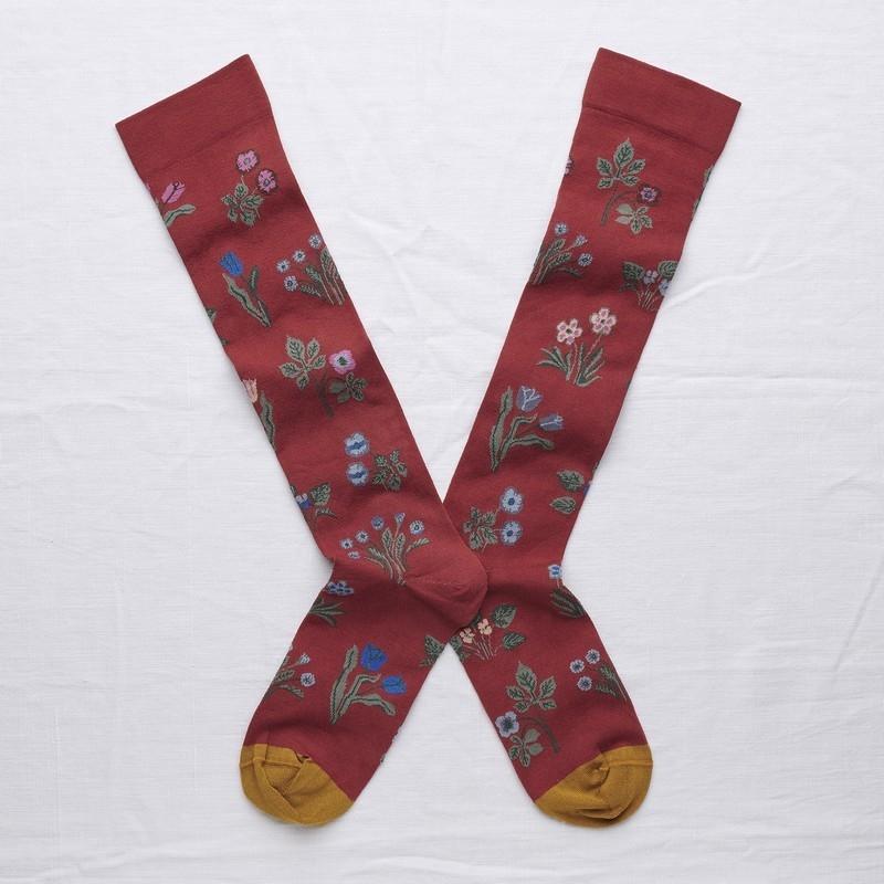 socks - bonne maison -  Seedling - Crimson - women - men - mixed