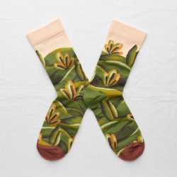 chaussettes - bonne maison -  Cyprès - Multico - femme - homme - mixte