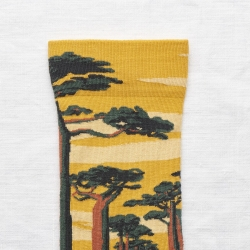 chaussettes - bonne maison -  Baobab - Bouton d'Or - femme - homme - mixte