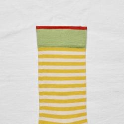 Mimosa Stripe